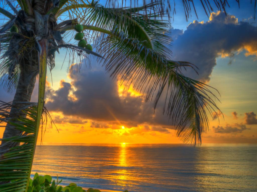 Boca Sunset